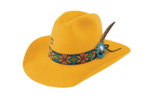 Sombrero Charlie 1 Horse Gold Digger Yellow