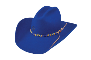 Sombrero Charlie 1 Horse Royal Highness Blue