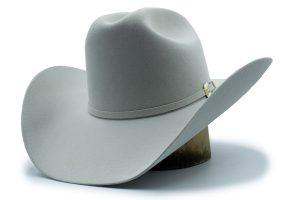 Sombrero Stetson Adelante 6x Gris